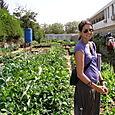 Sarah, Steve's AIDS Garden