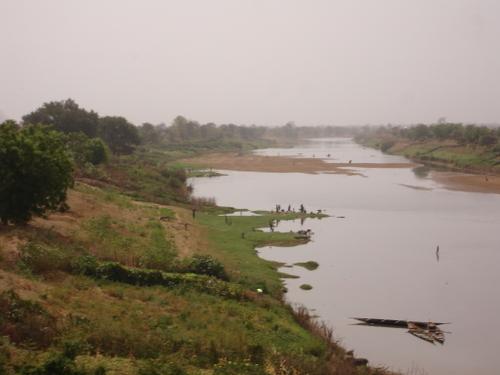 Intensive river farming