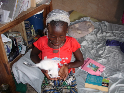 Ndaari and Kitten #3
