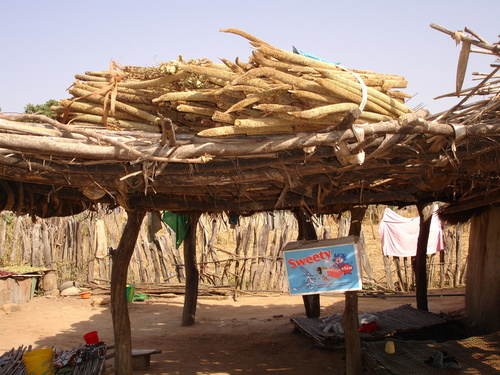 Shade structure with millet