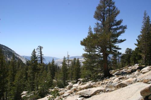 Yosemite_don_pedro_029